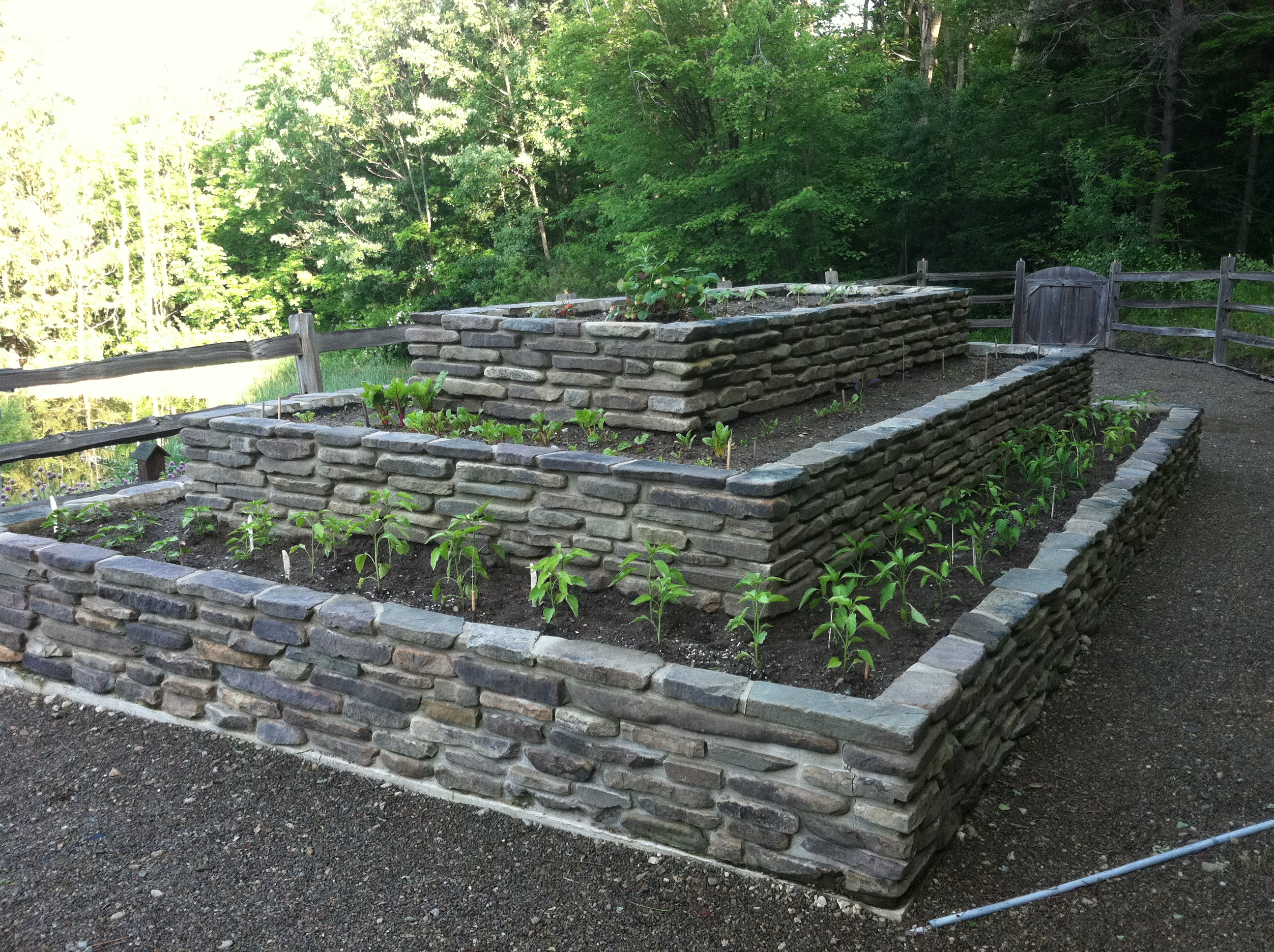 Stone Raised Garden Beds Related Keywords Suggestions